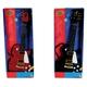 gitara-rockowa-z-metalowymi-strunami-simba