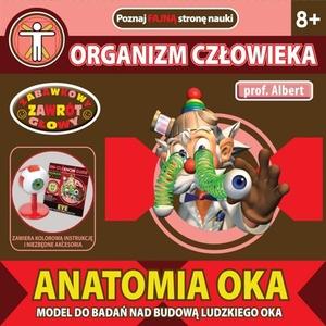 Anatomia Oka Profesor Albert - Dromader