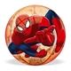 pilka-spiderman-mondo