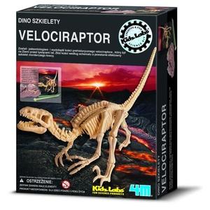Wykopaliska Velociraptor - 4M