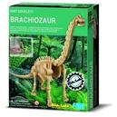 dino-szkielety-brachiozaur-wykopaliska-4m