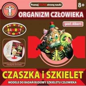 Czaszka i Szkielet Profesor Albert - Dromader