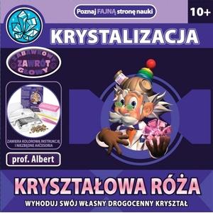 Kryształowa Róża Profesor Albert - Dromader